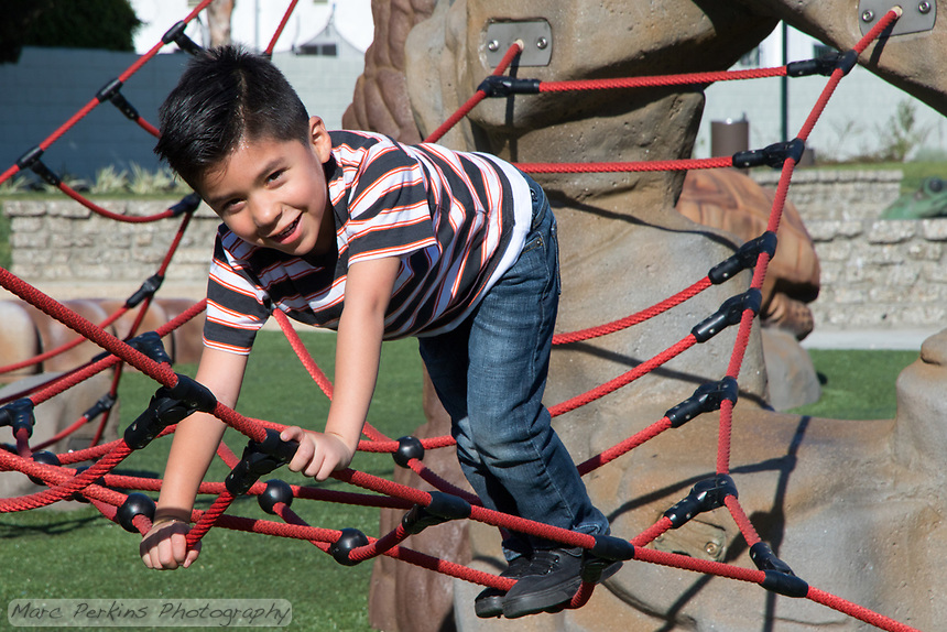 A young boy climbs the ropes in the reptile play area of State Street Park.
