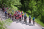 The peloton in action during Stage 8 of the Criterium du Dauphine 2019, running 113.5km from Cluses to Champery, Switzerland. 16th June 2019.<br /> Picture: Colin Flockton | Cyclefile<br /> All photos usage must carry mandatory copyright credit (© Cyclefile | Colin Flockton)