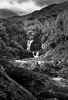 Maui-bw