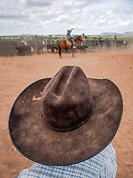 A cowboy' view of another round-up in Tucumcari, New Mexico.