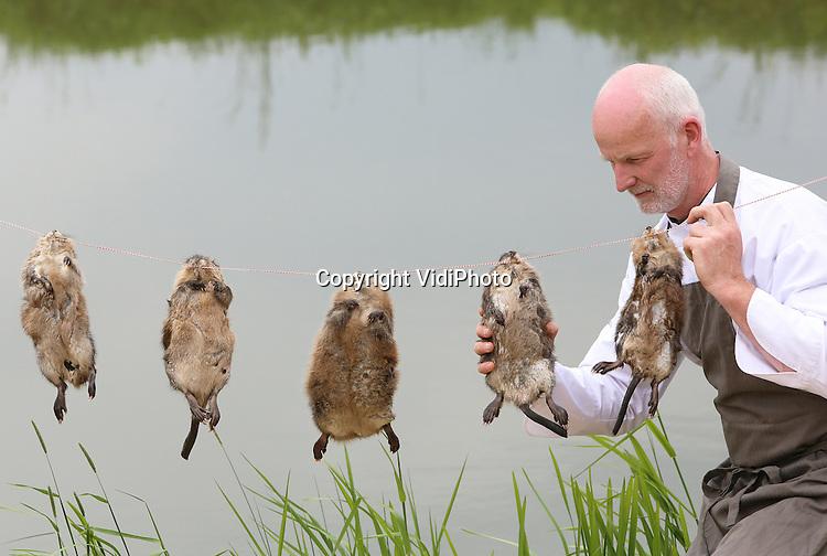 Foto: VidiPhoto<br /> <br /> COTHEN - Arjan Smit van restaurant-proeverij De Pronckheer uit Cothen, selecteert woensdag de beste muskusratten voor een stoofgerecht. Gevangen ratten worden nu op last van de waterschappen vernietigd. Deze beesten zijn daarom geschoten en geleverd door een jager. Smit vindt het weggooien van het muskusrattenvlees &quot;je reinste voedselverspilling&quot;, temeer omdat de overheid voor het behoud van onze dijken jaarlijks 30 miljoen euro in het vangen van de ratten stopt. Muskusratten zijn volgens hem het beste scharrelvlees dat er bestaat. Bovendien worden er zo minder dieren uit de bio-industrie genuttigd. In Belgi&euml; is waterkonijn, zoals de muskusrat daar genoemd wordt, een delicatesse. De provincie Utrecht wil de Cothense restauranthouder daarom een ontheffing geven voor het serveren van spreeuw -waarmee De Pronckeer vorig jaar in het nieuws kwam- en muskusrat.