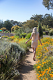 USA, California, Big Sur, Esalen, a woman walks in and enjoys the flowers in the Buddha Garden