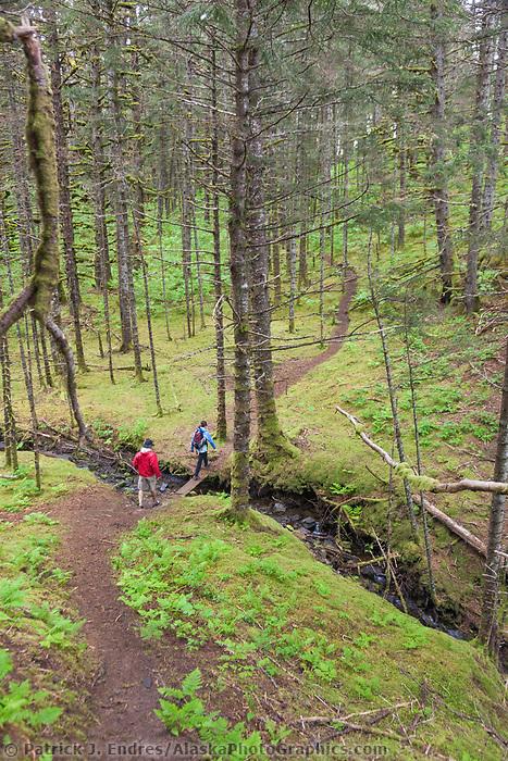 Hikers on a trail through the forest on Kodiak Island, Alaska.