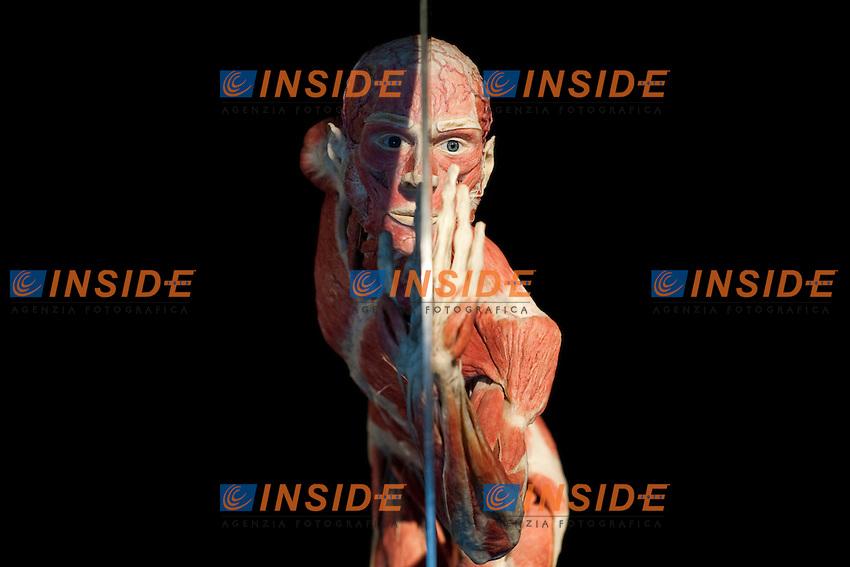 BODY WORLDS LA MOSTRA ORIGINALE DEL MEDICO ED ARTISTA TEDESCO GUNTHER VON HAGENS ALLE OFFICINE FARNETO..ROMA 13 SETTEMBRE  2011..PHOTO  SERENA CREMASCHI INSIDEFOTO..............................