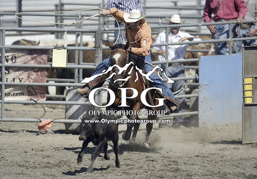 27 Aug 2009:  Sterling Smith from Stephenville, Texas scored a 7.7 in the Tie Down roping competition at the Kitsap County Thunderbird PRCA Pro Rodeo in Bremerton, Washington.