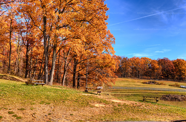 Delaplane Cellars has placed picnic tables at the edge of nearby woods, with a lovely view of the valley below.