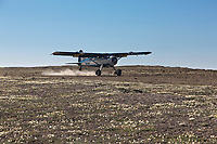 Coyote Air, de Havilland beaver bush plane, Utukok Uplands, National Petroleum Reserve Alaska, Arctic, Alaska.