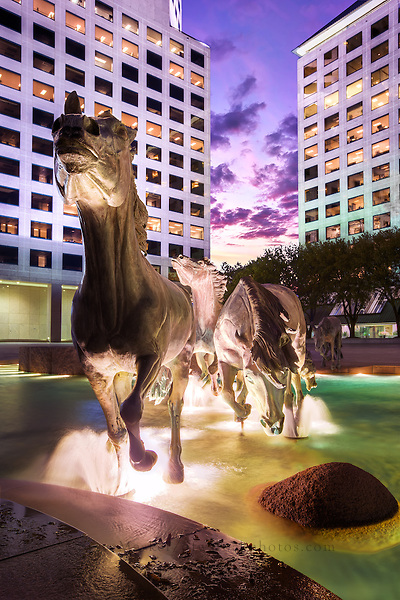 The sculpture commemorates the wild mustangs that were historically important inhabitants of much of Texas. It portrays a group at 1.5 times life size, running through a watercourse, with fountains giving the effect of water splashed by the animals' hooves. Created by Robert Glen, the bronze is said to be the largest equestrian sculpture in the world. The work was commissioned in 1976 and installed in Williams Square in 1984.