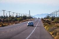 Desierto, San niclolas Sahuaros