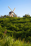 Morgan Lewis Windmill, St. Andrew, Barbados is the last sugar windmill to operate in Barbados: It stopped grinding cane commercially in 1947. The mill was given to the Barbados National Trust by the late Egbert Lawrence Bannister for preservation as a museum. It is unique historic and architectural monument - it is one of the only two working sugar windmills in the world today..During the 'crop' season, February through July, its sails are put in place and it operates one Sunday in each month, grinding cane and providing cane juice - providing a historical re-enactment and one of the more interesting sights in Barbados.