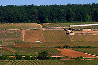 vineyard corton hill aloxe-corton cote de beaune burgundy france