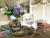 GIORDANO, CUTE ANIMALS, LUSTIGE TIERE, ANIMALITOS DIVERTIDOS, paintings+++++,USGI2927,#ac#, EVERYDAY ,cats
