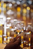 Europe/Grande Bretagne/Ecosse/Moray/Speyside/Keith : Distillerie Strathisla Whisky Chivas - Dégustation avec le maître assembleur de Chivas (Master Blender) - Détail des verres à dégustation des malts