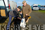 Brendan and Brian Purcell from Ballyduff with their dog Joan's Black at the Ballyduff Coursing on Sunday.