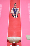 Gymnastics World Championships Mens Qualifications  26.10.15. USA in action. Christopher Brookes