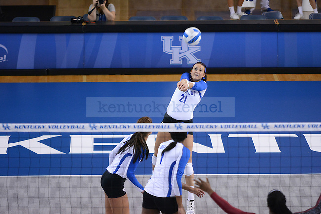 Freshman Kelsey Wolf sets the ball against South Carolina in Lexington, Ky., on Friday, November 8, 2013. Photo by Caleb Gregg | Staff