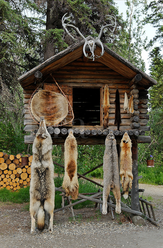 Traditional food cache, Athabascan, Chena Indian Village, Alaska