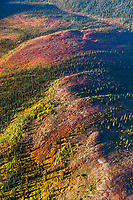 Colorful autumn colors on a tundra ridge in the Brooks range, Gates of the Arctic National Park, Arctic, Alaska.