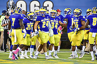 Newark, DE - OCT 29, 2016: Delaware Fightin Blue Hens defensive back Ryan Torzsa (24) celebrates his second interception in the game with his teammates during game between Towson and Delaware at Delaware Stadium Tubby Raymond Field in Newark, DE. (Photo by Phil Peters/Media Images International)