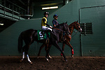 ARCADIA, CA - JANUARY 06: Shivermetimber with Flavien Prat before at the Sham Stakes at Santa Anita Park on January 06, 2018 in Arcadia, California. (Photo by Alex Evers/Eclipse Sportswire/Getty Images)