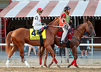 Thatwouldbegrand in the post parade as Mind Control (no. 2) wins the Hopeful Stakes (Grade 1), Sep. 3, 2018 at the Saratoga Race Course, Saratoga Springs, NY.  Ridden by John Velazquez, and trained by Gregory Sacco, Mind Control finished  3/4 lengths in front of Mucho (No. 7).  (Bruce Dudek/Eclipse Sportswire)