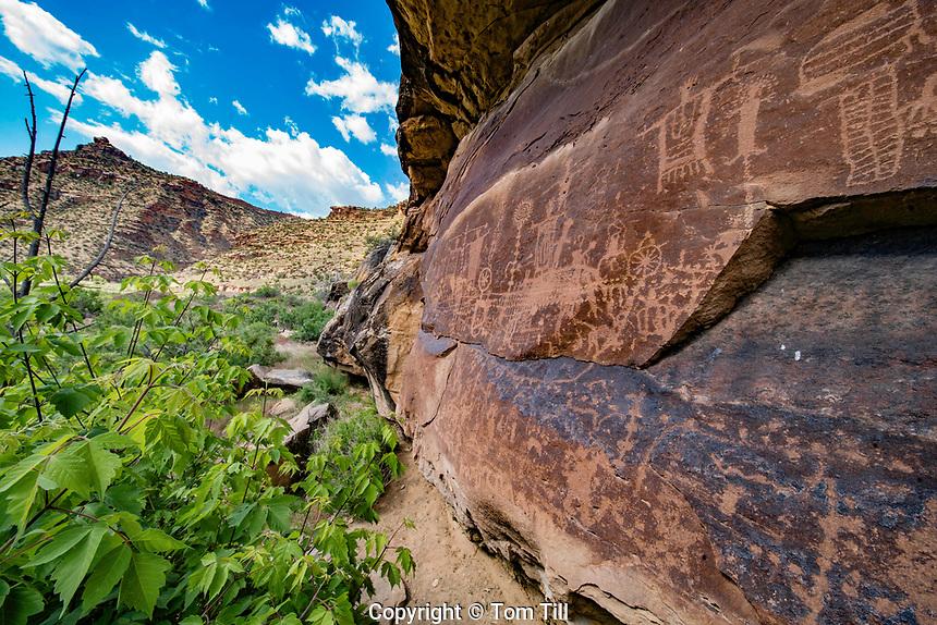 Fremont Rock Art,  Green River Wilderness, Utah , Ancient Native American rock art