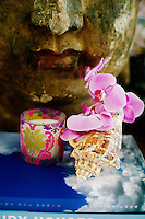 Pink Phalaenopsis orchids in a simple shell and a scented candle are placed in honour of the Buddha on the central table in the living room