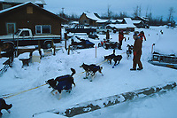 R.Mackey Galena Checkpoint Iditarod 1992 winter