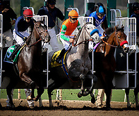 ARCADIA, CA - FEBRUARY 10: Unique Bella #4 with Mike Smith comes out the gate in the Santa Maria Stakes at Santa Anita Park on February 10, 2018 in Arcadia, California. (Photo by Chris Crestik/Eclipse Sportswire/Getty Images)