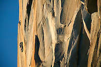 Climbers high on the face of El Capitan, Yosemite National Park, California.