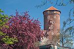 Baszta Sandomierska na Zamku Kr&oacute;lewskim na Wawelu, Krak&oacute;w, Polska<br /> Sandomierz Tower at the Wawel Royal Castle, Cracow, Poland