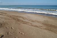 - the Eboli beach....- la spiaggia di Eboli