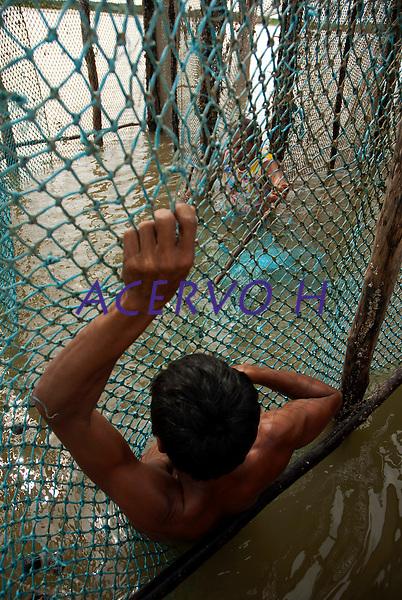 Pescadores artesanais utilizam o curral como armadilha e capturaram cerca de 200 quilos de pescado de v&aacute;rias esp&eacute;cies por dia como: piramutabas, sardinhas, filhotes, pescada amarela, robalo e tainhas.  A pesca &eacute; realizada na Reserva Extrativista  Marinha M&atilde;e Grande no litoral do Par&aacute;, na foz do rio Amazonas.<br /> Curu&ccedil;&aacute;, Par&aacute;, Brasil<br />  Foto: Paulo Santos <br />  17/05/2009