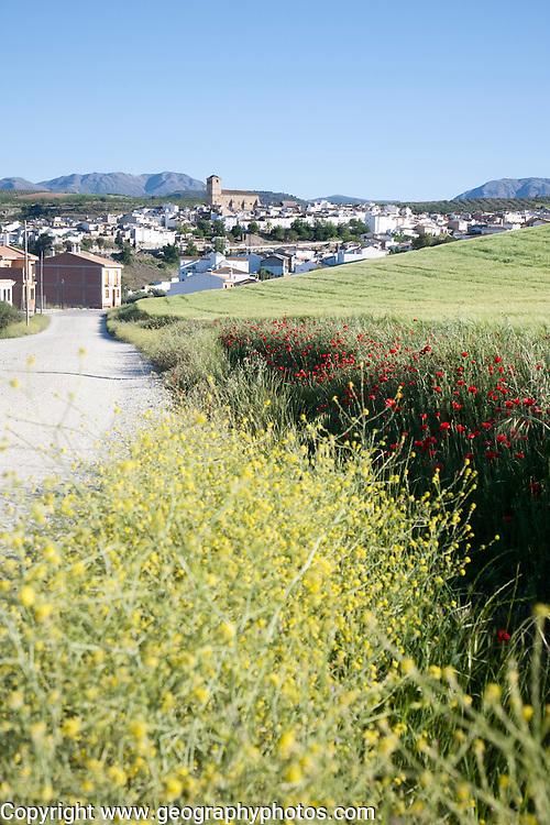Alhama de Granada, Spain in Andalucian farming landscape of fields and rolling hills