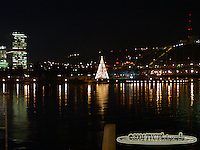 The Christmas Tree at The Point