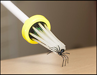 BNPS.co.uk (01202) 558833<br /> Picture: Peter WIllwos<br /> <br /> Arachnophobes can finally breathe a sigh of relief thanks to a new handy gadget that will securely capture and remove spiders. The clever device could put an end to many people resorting to a glass and a piece of card to remove the eight-legged-creatures or even killing them. The quirky invention, dubbed the Spider Catcher, is a 2ft long green handle with dozens of transparent gripping bristles at one end that are activated by a trigger that picks up the spider, leaving him unharmed.