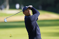 Tiger Woods (USA) in action during the Pro-Am ahead of the The Genesis Invitational, Riviera Country Club, Pacific Palisades, Los Angeles, USA. 11/02/2020<br /> Picture: Golffile | Phil Inglis<br /> <br /> <br /> All photo usage must carry mandatory copyright credit (© Golffile | Phil Inglis)
