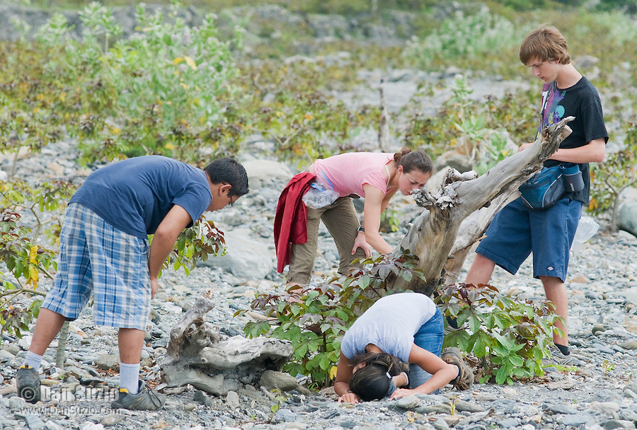 American students Caitlin Sanchez, Jester Ceballos, Marianna Tucci, and Eric Leatham search for lizards in a riverbed in the Liquica district of Timor-Leste (East Timor). They are participating in an ongoing survey of Timorese reptiles and amphibians.