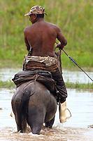 Vaqueiro chega do campo cavalo, fazenda Tuiuiu.<br /> Cachoeira do Arari, Pará, Brasil.<br /> 08/05/2006<br /> Foto Paulo Santos/Interfoto