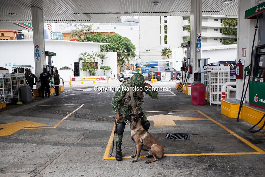 June 16, 2018: A Mexican army soldier with his trained dog looking for drugs and weapons at a flying check point set up in the touristic area of downtown Acapulco, Guerrero. A juncture of security forces, among them military, marines, federal police and local police joined under one-command to fight crime violence in the once-glamorous resort destination.