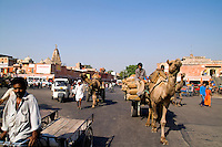 Traffic and traditional transportation  in downtown center of the Pink City of Jaipur, Rajasthan, India