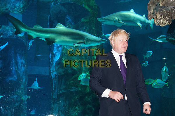 The Mayor of London Boris Johnson visits the London Aquarium's newest attraction, the shark tank, to promote the range of summer promotions available to Londoners and tourists alike, including 2 for 1 ticket offers and money off promotions. London Aquarium, London, England..August 17th, 2012.half length black white purple tie shirt suit water animals .CAP/BF.©Bob Fidgeon/Capital Pictures.