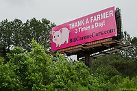 A billboard along Interstate 40 in Dublin County near Wallace, NC Wednesday, May 16, 2018. (Justin Cook for The Guardian)