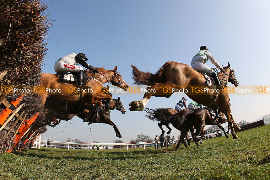 "The field in jumping action during the Call Star Sports On 08000 521321 ""National Hunt"" Novices Hurdle - Horse Racing at Plumpton Racecourse, East Sussex - 12/03/12 - MANDATORY CREDIT: Gavin Ellis/TGSPHOTO - Self billing applies where appropriate - 0845 094 6026 - contact@tgsphoto.co.uk - NO UNPAID USE."