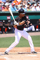 Miami Marlins second baseman Wilson Valdez (1) at bat against the Detroit Tigers during a spring training game at the Roger Dean Complex in Jupiter, Florida on March 25, 2013. Detroit defeated Miami 6-3. (Stacy Jo Grant/Four Seam Images)........