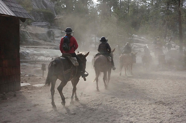 Riders on Mules leave Merced Lake Camp on High Sierra Camp loop