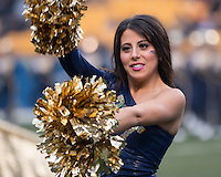 A member of the Pitt dance team performs. The Pitt Panthers defeated the Syracuse Orange 30-7 at Heinz Field, Pittsburgh, Pennsylvania on November 22, 2014.