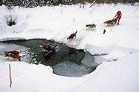S.Butcher leads dogs creek near Kaltag Iditarod 1991
