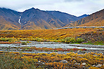 Pipeline with fall colored tundra near Atigun Pass, Continental Divide, Dalton Hwy, Arctic Alaska, Autumn.