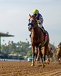 JAN 04: Authentic with Draymen Van Dyke wins the Sham Stakes  at Santa Anita Park in Arcadia, California on January 01, 2020. Evers/Eclipse Sportswire/CSM